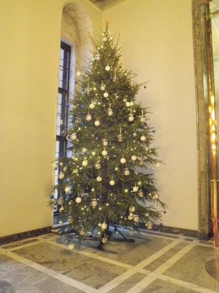 Joku jo ehtikin kysellä kuvaa Eduskunnan tämän vuoden joulukuusesta. Tässä tuo ylväs kuusi Valtiopäiväsalista.