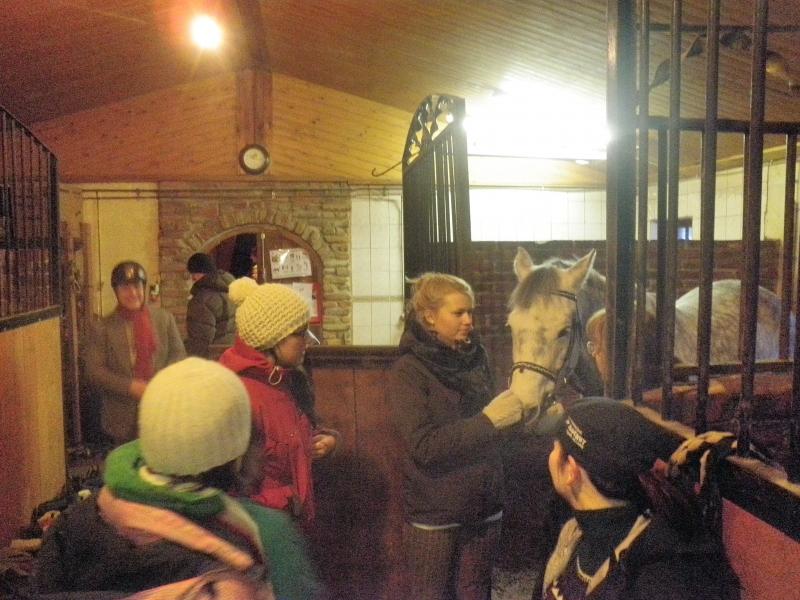 Hämeenlinnasta sitten kotiin ja Vaahteramäen Ratsastuskoululle joulukisaan. Koulua ja kuudes sija uudella hevosella. Ihan yes.