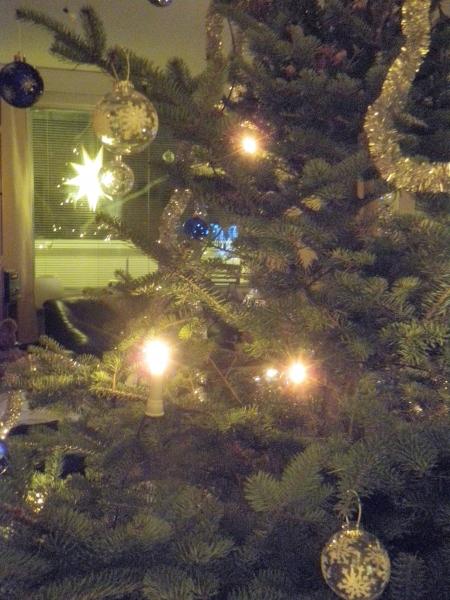 Joulupäivän tunnelmaa... rauhaisaan ja rakasta.