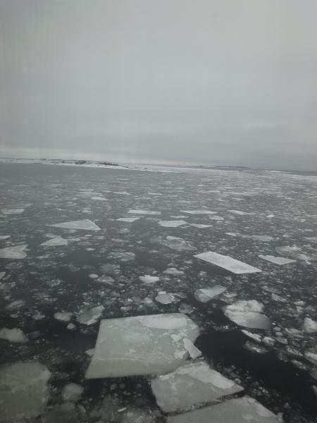 Jäinen Itämeri oli jylhä näky. Tässä hieman tunnelmakuvia Kokoomuksen Hyvinvointi-risteilyltä eiliseltä ja tältä päivältä.