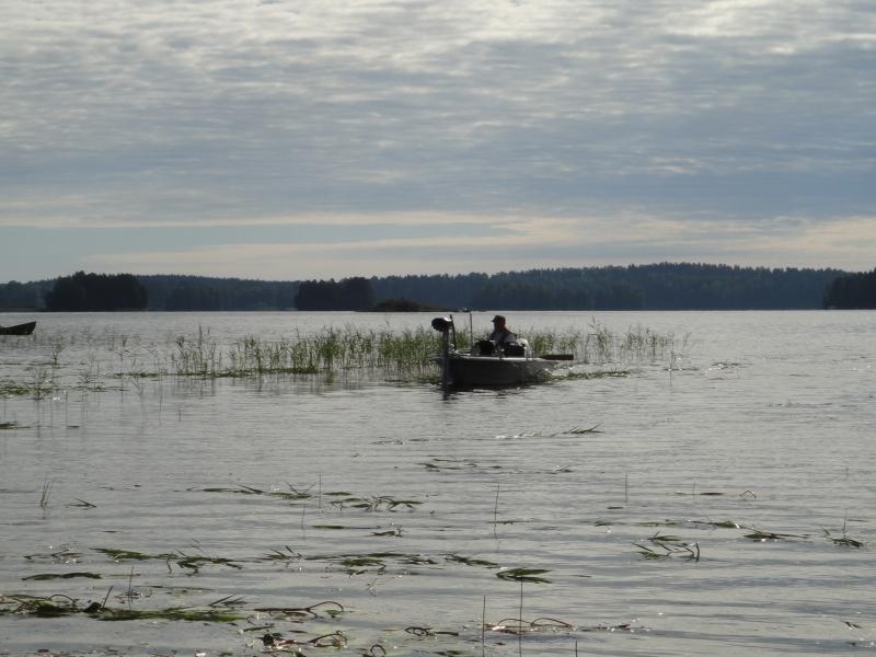 Tämän kolmen tunnin niiton maksoi yksi loppilainen, joka oli täältä blogistani bongannut Loppijärven niitot ja halusi mukaan auttamaan kaunista järveämme. 240 euroa sponsorirahaa ja sillä siis valtavasti aikaiseksi. Kiitos tästä!