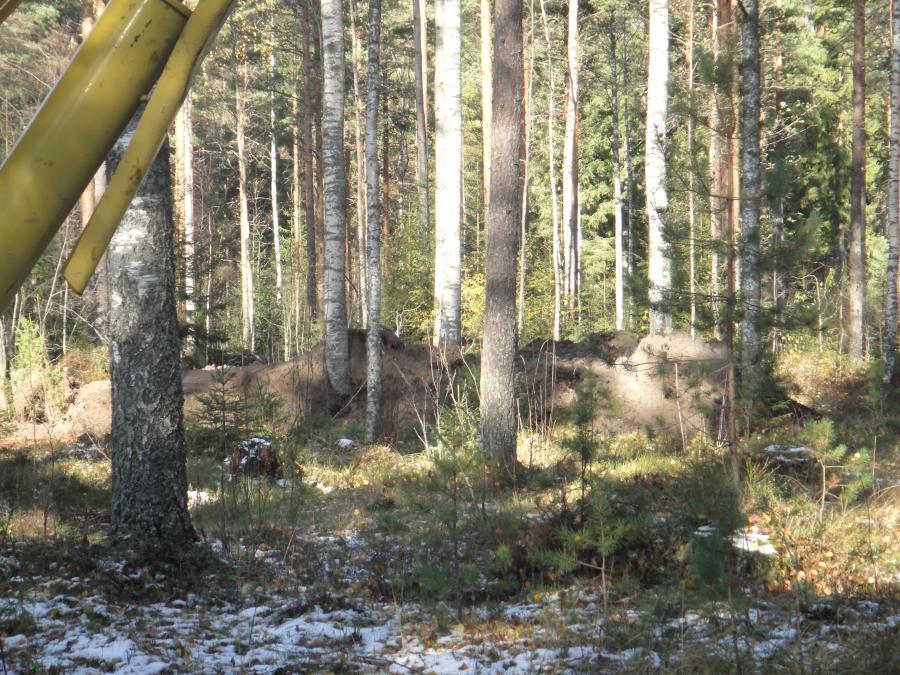 Ja tuon verran sen metsässä sitten näkyy valmiina ja maisemoituu pian sinne täysin.