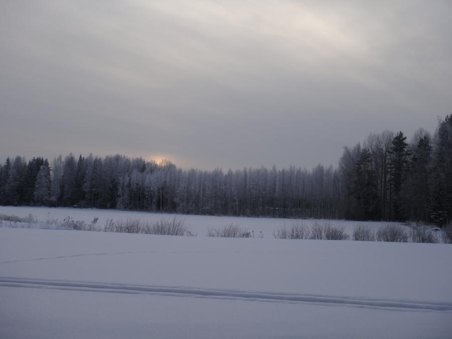 Kauniita talvihetkiä Lopen Hevosojalta jouluaattoaamupäivältä.