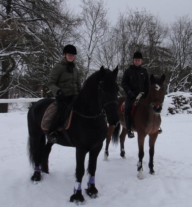 Janakkalan kunnanjohtajan Anna-Mari Ahosen kanssa päivä tänään hevosten kanssa Aulangon Puistometsässä. Hieman työasioita, asioita Lopelta ja Janakkalasta ja paljon enemmän ihanaa seuraa ja yhdessäoloa luonnon lumivaipan keskellä.