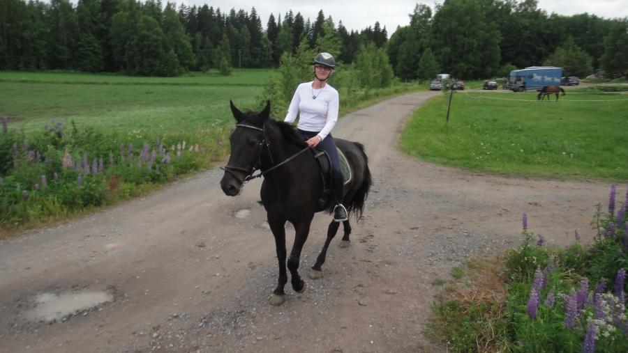 Ja illan ridaillun loppulenkille. Siis kuvan hevosenselästä otettuna. Olisiko se siis ns. In horse camera. Saija Grönholm perässämme.