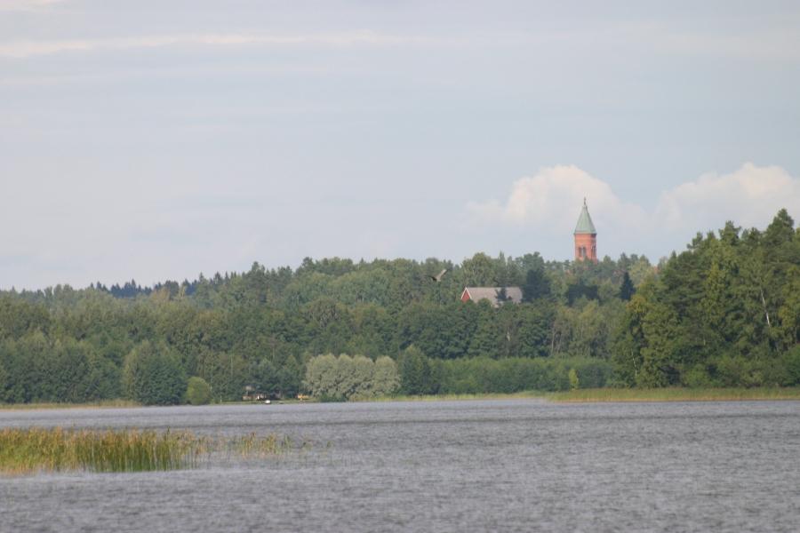 Kalasääski ja harmaahaikara yhtaikaa Loppijärvellä lounastamassa. Upea luonnonnäytelmä.