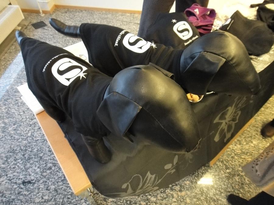 Ja kaikkea saa... tässä hämäläisiä Sauli-takkeja koirille. :)