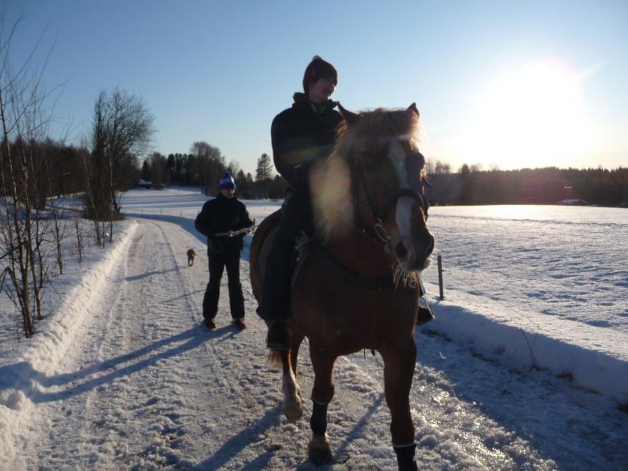 Ja hyvin se sujui meikäläiseltäkin. Entinen avustajani Tiina Seppälä hevosenselässä.