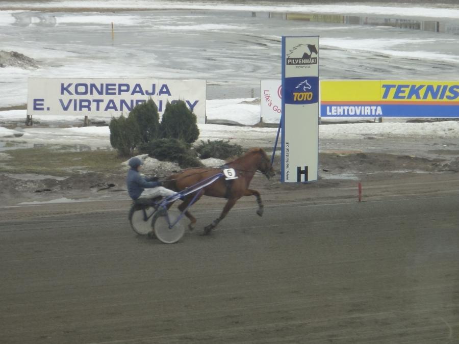 Forssan Pilvenmäen ToTo75-raveissa 24.3.2012 kannustamassa Hurja-Eroa alias Eeroa ja voittohan sieltä tuli upealla juoksulla.