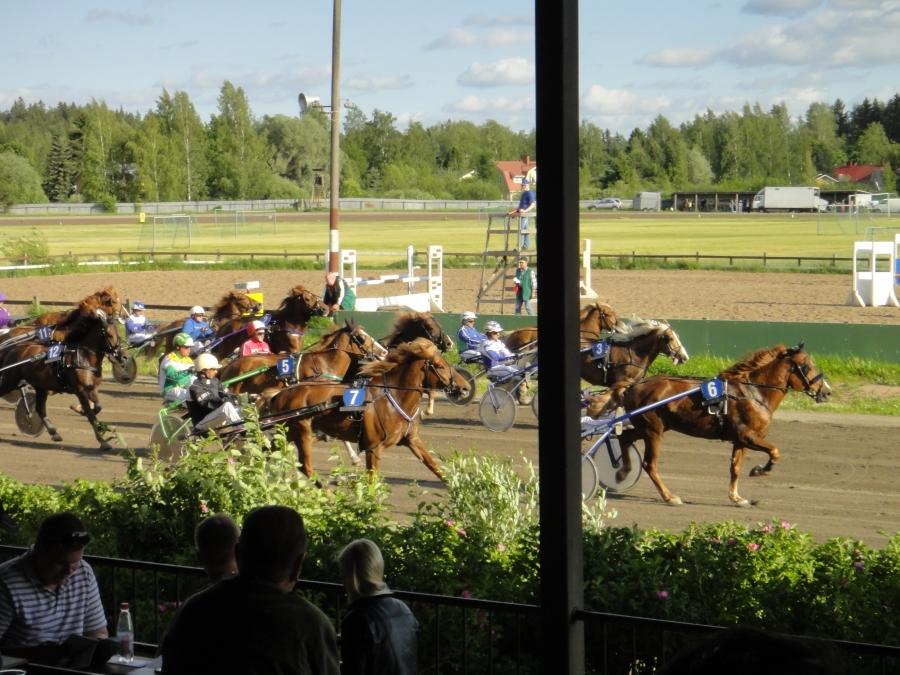 Riksun kesäravipäivät kaudella 2012 ovat: torstai 12.7., sunnuntai 29.7., sunnuntai 5.8. ja sunnuntai 26.8.
