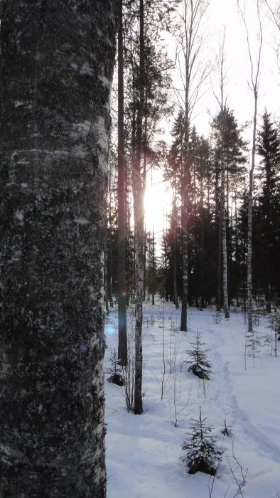 Makkaratulilla Loppijärven rannoilla. Talvipäivän parhautta lapsen ja vaarin kanssa.