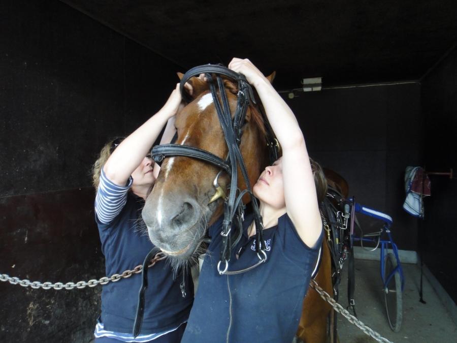 Ja Hurja-Eron tekijöitä eli Tiina Seppälä ja Minna Varis laittamassa hevosta valmiiksi Jari Nylundille.