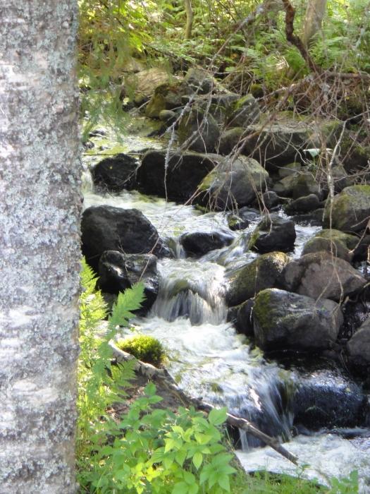 Ja sen tunnelma tuoja savun tuoksun rinnalla on tämä Kaarjoen upea koski Kalamyllyn