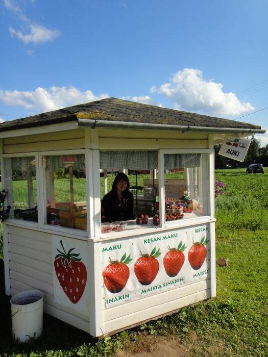 Ja sitten myös takuu varmasti tuoreita ja paikallisia mansikoita Syrjälän tilalta. Hyvä palvelu, hyvä mansikka, parempi mieli.