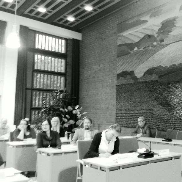 Ja tässä yksi tunnelma kuva itse kokouksesta puheenjohtajan paikalta napattuna. Edessä Eeva Pyhälammi ja sitten Jarmo Laukkanen ja Tiina Seppälä ja seuraavassa rivissä Riitta Joutsi-Hänninen ja Anniina Lucenius. Takarivissä näkyy Aleksi Rautiainen ja hieman myös Antti Mikkola. Loppi-maiseman edessä kuntamme talousjohtaja Pekka Leppänen jonka kanssa olen saanut tehdään pitkään yhteistyötä niin aikanaan ammattikoululla kuin nyt Lopellakin. Osaava ja aikaansaapa ja taloutta hyvin hoitava tj.