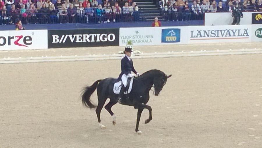 Ja tässä upeasti voittoon ratsastanut Mikaela Lindh ja Skovlunds M </p> <div class=