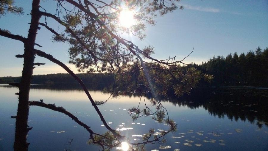 Muutama maisemakuva Lopen Luutalammilta tältä aamulta. Kaunis päivä siis tuli ja upea ulkoiluretki.