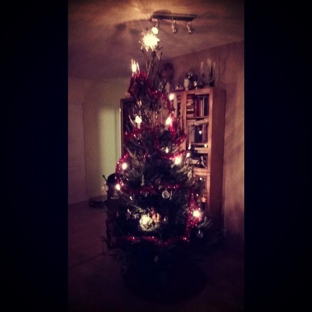 Joulupuu on rakennettu. Joulu on jo ovella. Namusia ripustettu ompi kuusen oksilla...