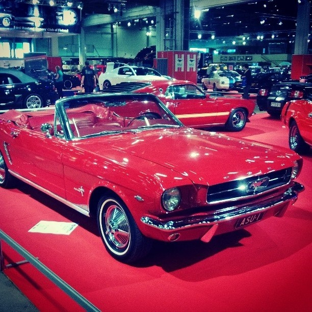 American Car Showssa Speden Mustang ASU-1. Upea auto juhlistamassa Mustangin 50. juhlavuotta.