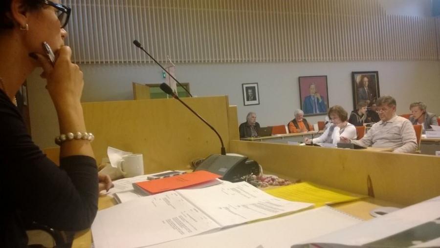 Ja tässä sitten hieman aikaikkunaa. Lopen kunnan nykyinen kunnanjohtaja Karoliina Viitanen katselee valtuustosaliin jonka seinällä taustalla keskellä tilannetta
