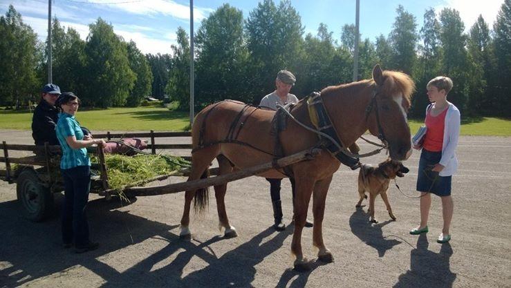 Ja tässä sitten yksi tunnelmakuva Lopen uudesta Hevoskarnevaalitapahtumasta Korkeelan pallokentältä. Hieno tapahtuma missä paljon asiaa ja valtavasti nähtävää. Hienoa Lopen hevosihmiset!