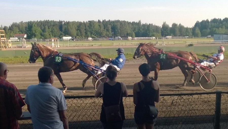 Ja tässä sitten Lopen miesten jäsentenvälinen. Jari Nylund ja Kyösti Hagert vastakkain hevosin Alviira ja Hirmu-Helka. Hirmu-Helkalla upea juoksukin takamatkalta ja Alviiralle pieni kolari ja koivet verille. Harmin paikka.
