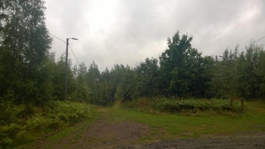 Ja tässä latupohjien ja pururajan yksi risteysalue. Tälle alueelle aikanaan istutimme oppilaitteni kanssa mm. tammia ja pihlajoita. Iso-Korkeen puulajipuisto ja Lopen Uupuneiden puisto olivat yksi ensimmäisistä valtuustoaloitteistani jonka tein. Ja nyt upeat suuret metsäalueet eri puulajeja kasvavat Iso-Korkeella. Aluetta on jo hieman harvennettu ja parhaimmillaan puulajipuisto on vuosikymmenten päästä. Hieno muisto joskus.