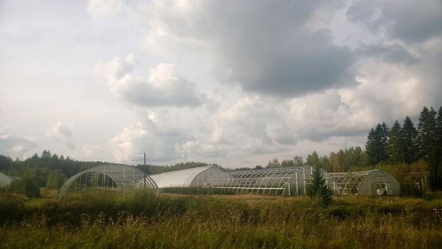 Metlan Haapastensyrjä Lopella on upea paikka ja korkean osaamisen ja metsäntutkimuksen keskittymä maassamme. Hienoja juttuja pääsin näkemään tänäänkin.