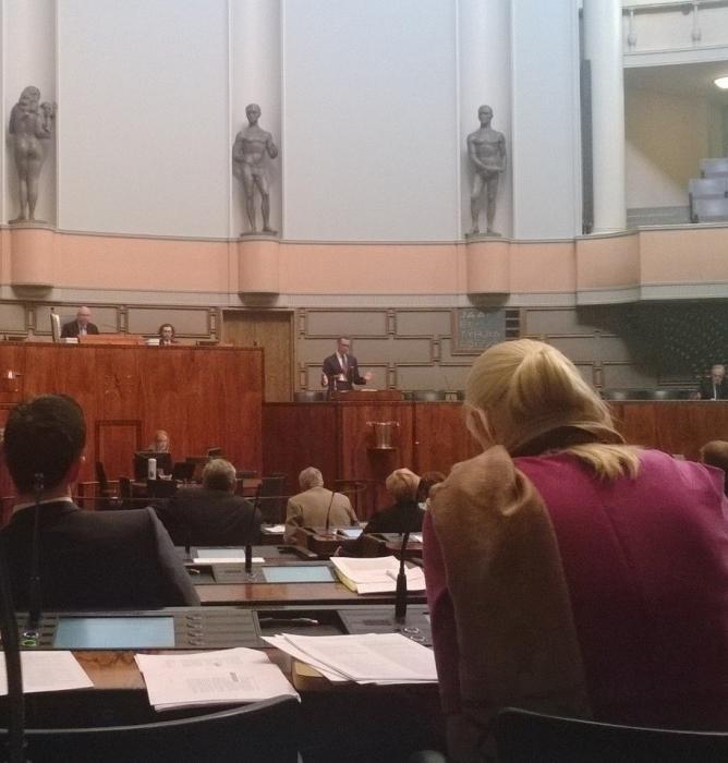 Ja aamusta ensimmäisenä parituntinen pääministeri Alexander Stubbin puheenvuoron jälkeen salissa.