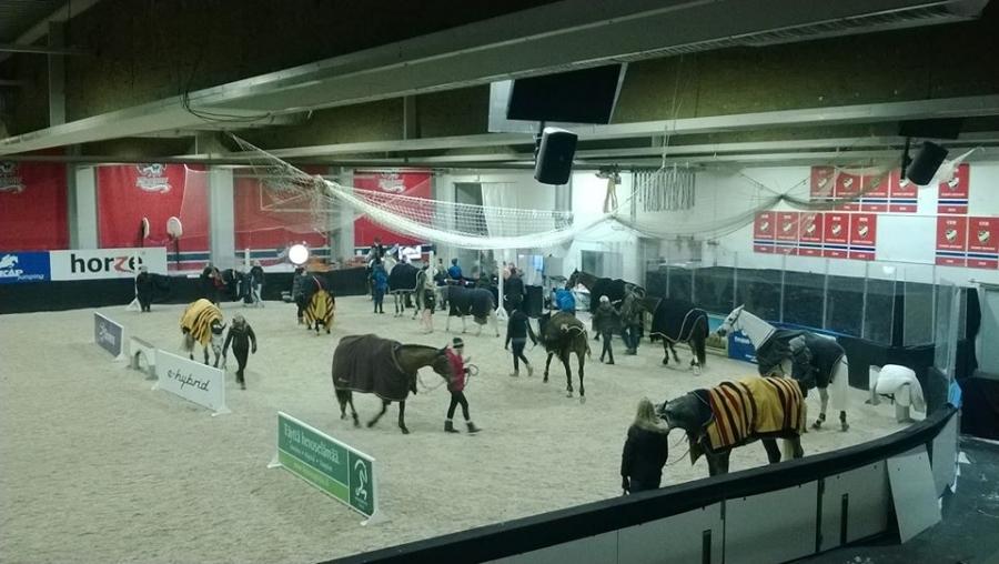Ja hieno juttu, että jälleen vuosien tauon jälkeen myös kaikki pääsevät seuraamaan halutessaan hevosten ja ratsukkojen veryttelyäkin. Erittäin mielenkiintoista seurattavaa. Suosittelen.