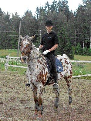 Kimberin selässä. Kuva viime vuoden kesältä. Otetaan uusia kuvia tässä joku päivä. Nyt uusi hevonen - kaunis ja taitavat Räppy.