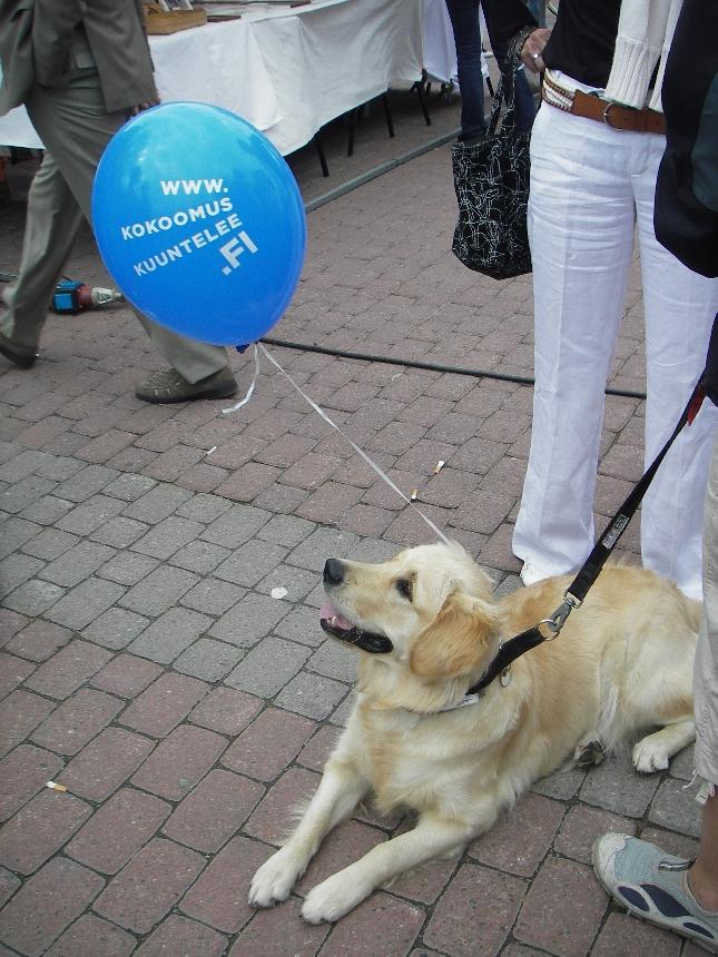 Kuunteleva koira :)