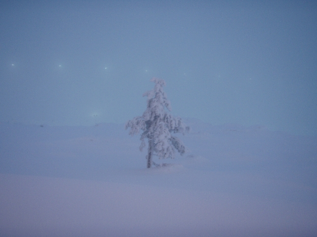 Upeita nämä talvimaisemat tuolla Levitunturin laella. Jotain erikoista. Eksotiikkaa.