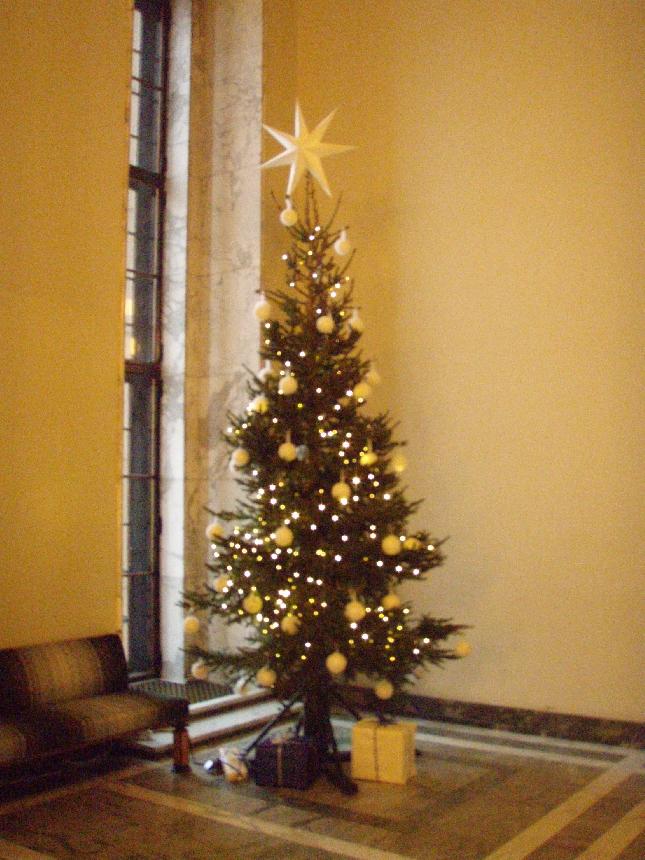 Tässä se nyt sitten on Eduskunnan Valtiosalin vuoden 2008 joulukuusi. Kaunis jälleen.