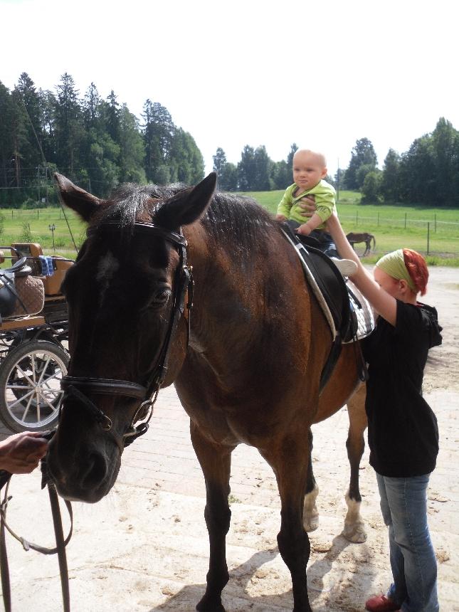 Pienenä se on aloitettava. Kaapo ensimmäistä kertaa hevosen selässä tänään leirityksemme päätteeksi.