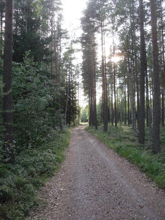 Iltasella kävelin katsomaan veljeniä piskuista tytärtä. Ihastuttava yksi vuotias ja niin suomea ja ruotsia kivasti sekaisin.