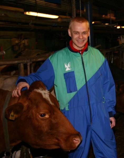 Kummilehmäni Huippu kuoli viime vuoden lopulla. Helmikuussa sain Portaankorvan tilalta syntymäpäivälahjaksi Lumihuipun. Nyt ollaan lehmänomistajiakin. Hieno rouva ja hyvää Valio-maitoa!